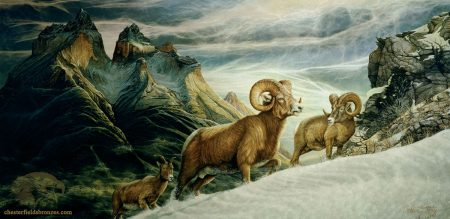 Big-Horn-Pass-Mountain-Goat-Fine-Art-Painting-Chester-Fields