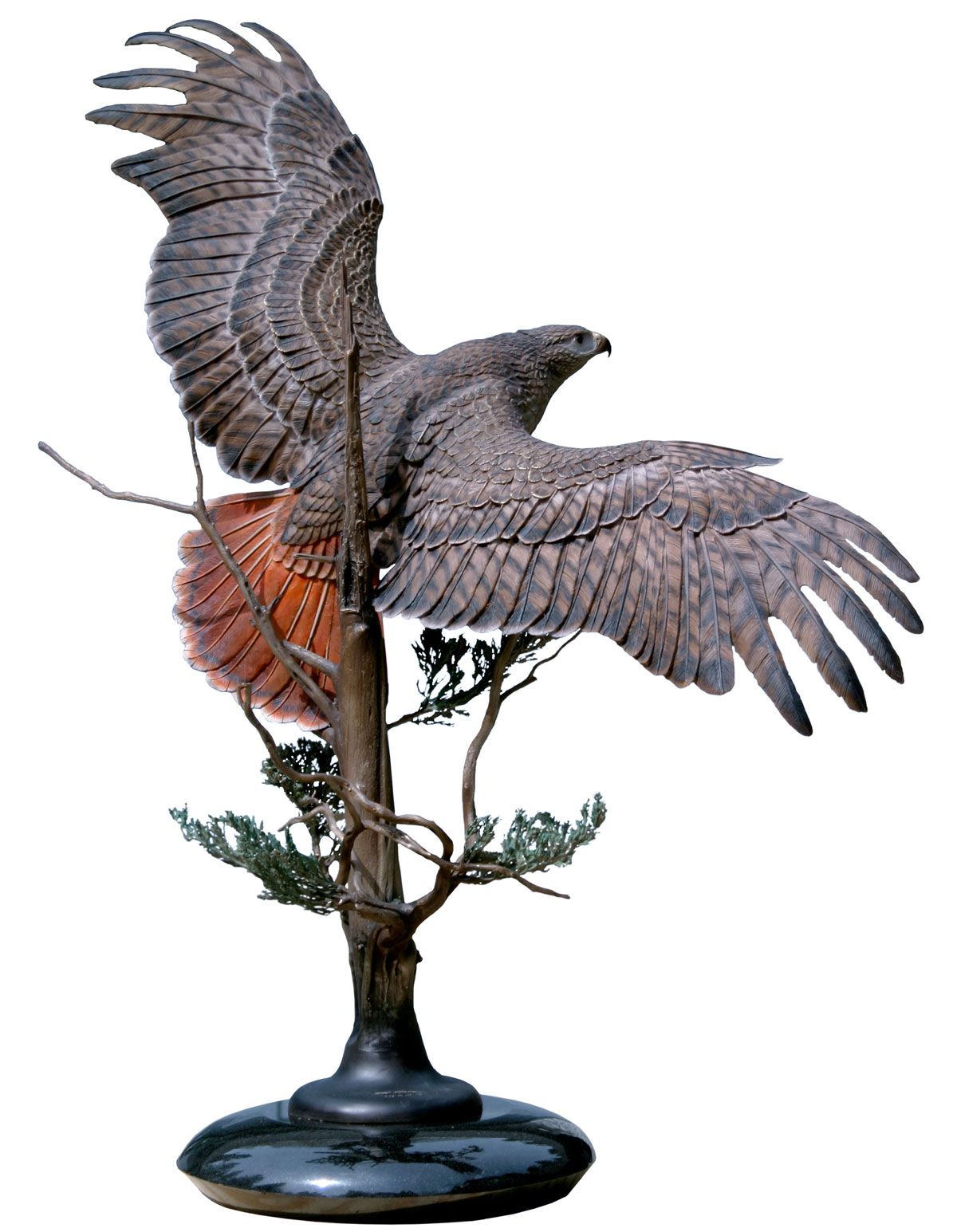 Sovereign Skies Red Tailed Hawk Sculptures